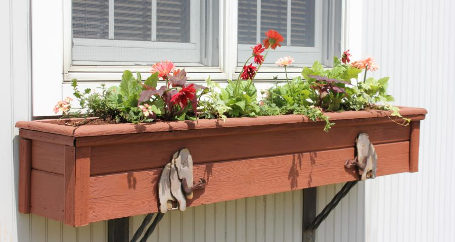 Window box with flowers along the ice age trail